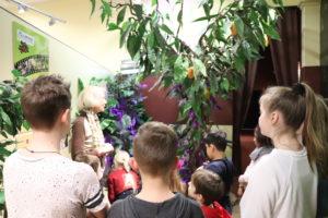Schulklassen können eine Führung im SchokoMuseum buchen
